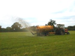 Spreading the silage effluent